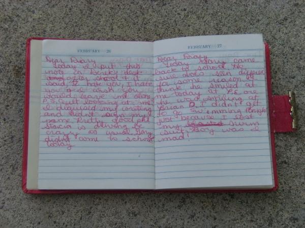 One-Year Diary 1980